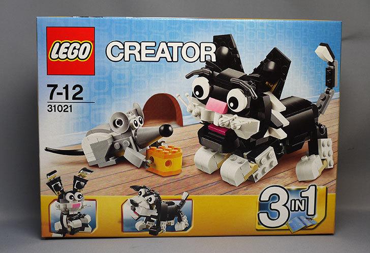 LEGO-31021-クリエイター・キャット&マウスが届いた3-1.jpg