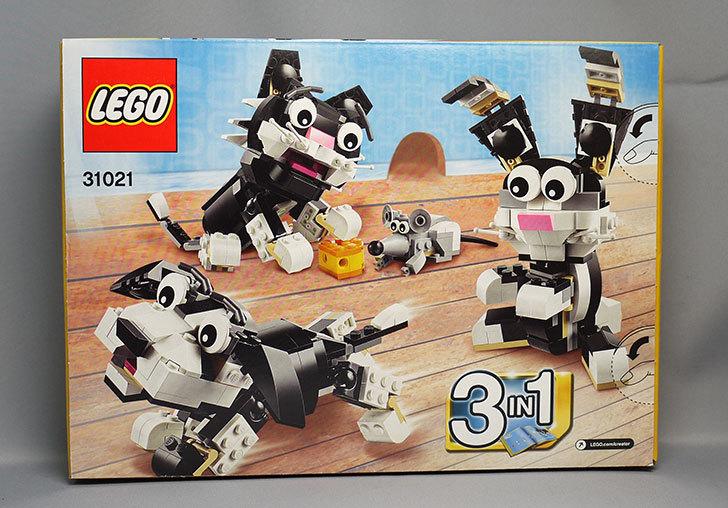 LEGO-31021-クリエイター・キャット&マウスが届いた3-2.jpg