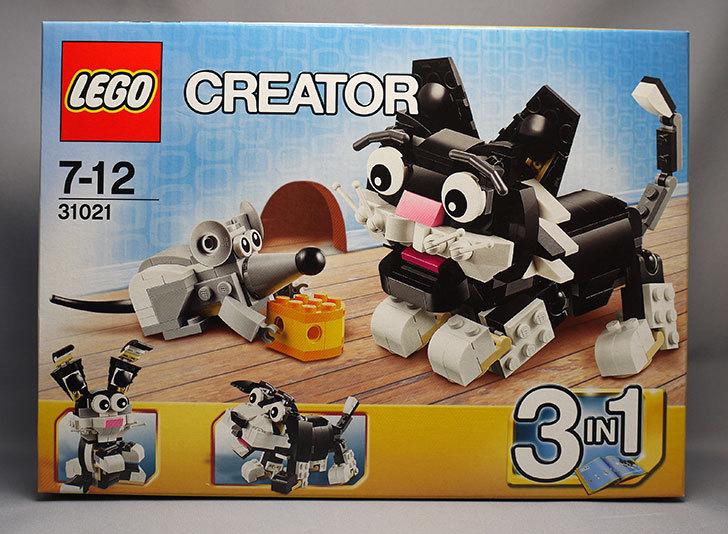 LEGO-31021-クリエイター・キャット&マウスが来た1.jpg