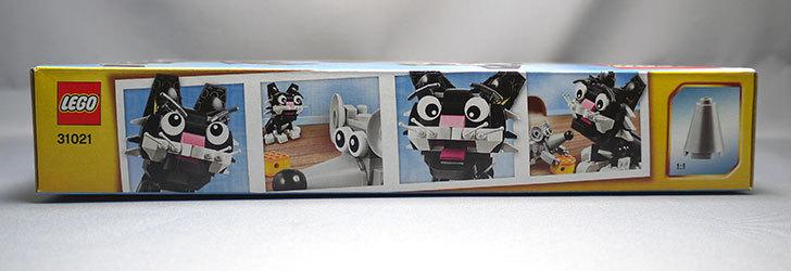 LEGO-31021-クリエイター・キャット&マウスが来た3.jpg