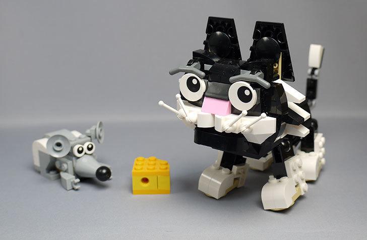 LEGO-31021-クリエイター・キャット&マウスを作った1-1.jpg