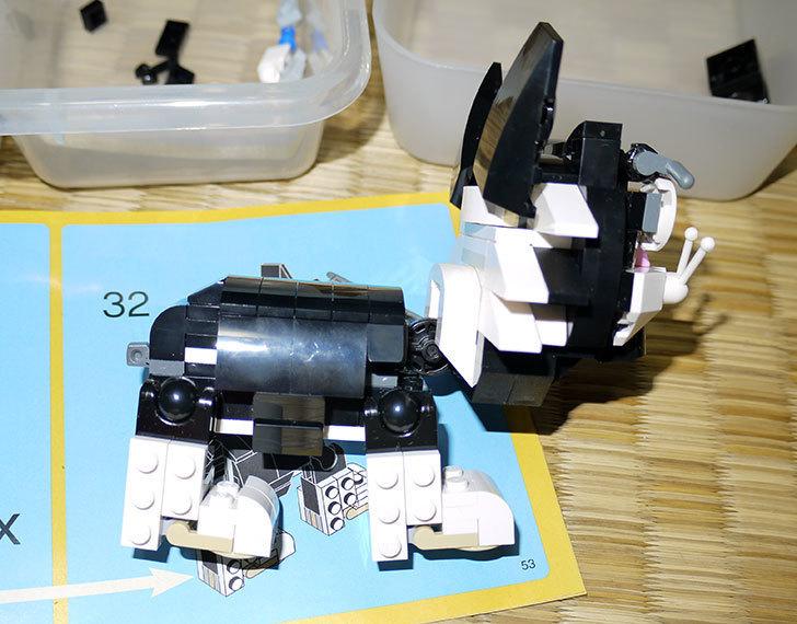 LEGO-31021-クリエイター・キャット&マウスを作った1-21.jpg