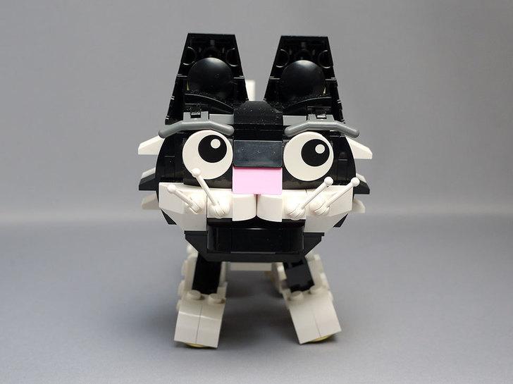 LEGO-31021-クリエイター・キャット&マウスを作った1-23.jpg