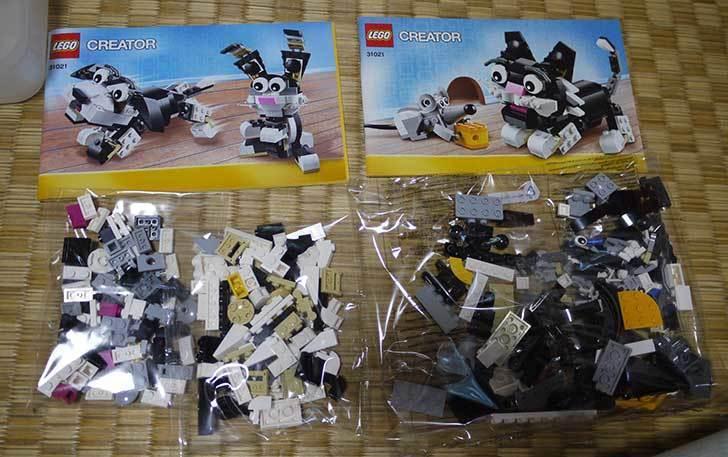 LEGO-31021-クリエイター・キャット&マウスを作った1-3.jpg
