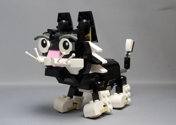 LEGO-31021-クリエイター・キャット&マウスを作った1-31.jpg