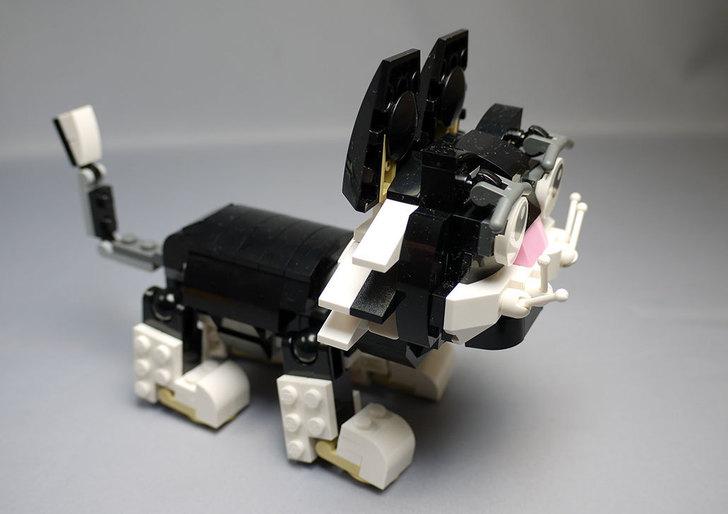 LEGO-31021-クリエイター・キャット&マウスを作った1-33.jpg