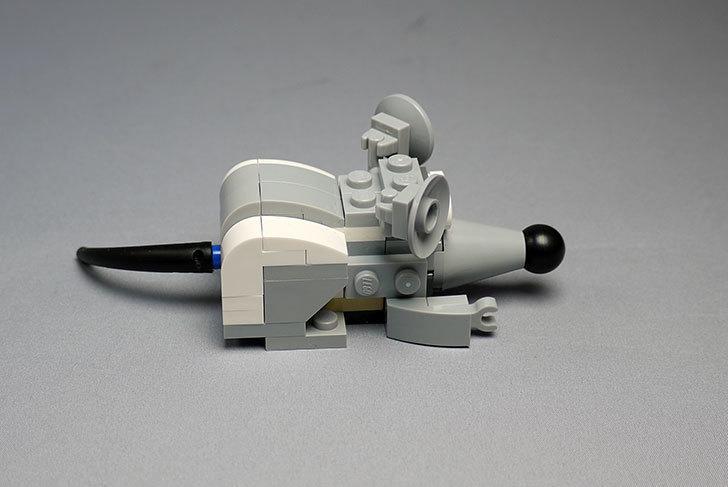 LEGO-31021-クリエイター・キャット&マウスを作った1-39.jpg