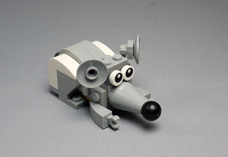 LEGO-31021-クリエイター・キャット&マウスを作った1-40.jpg