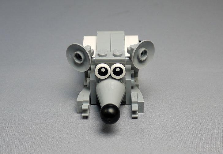 LEGO-31021-クリエイター・キャット&マウスを作った1-41.jpg