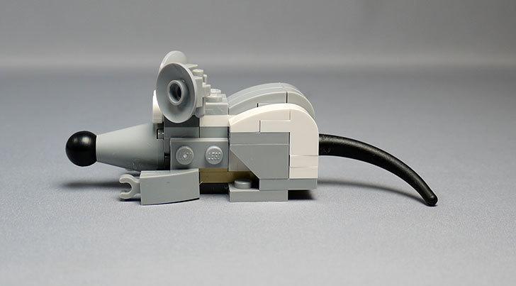 LEGO-31021-クリエイター・キャット&マウスを作った1-43.jpg