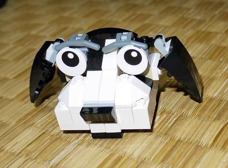 LEGO-31021-クリエイター・キャット&マウスを作った2-11.jpg