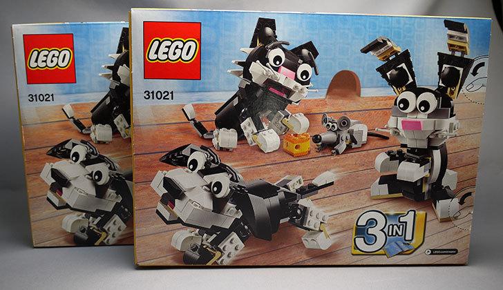 LEGO-31021-クリエイター・キャット&マウスを追加購入した。2個目2.jpg