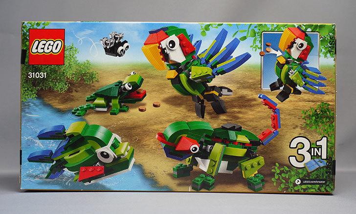 LEGO-31031-熱帯の動物たちが届いた2.jpg