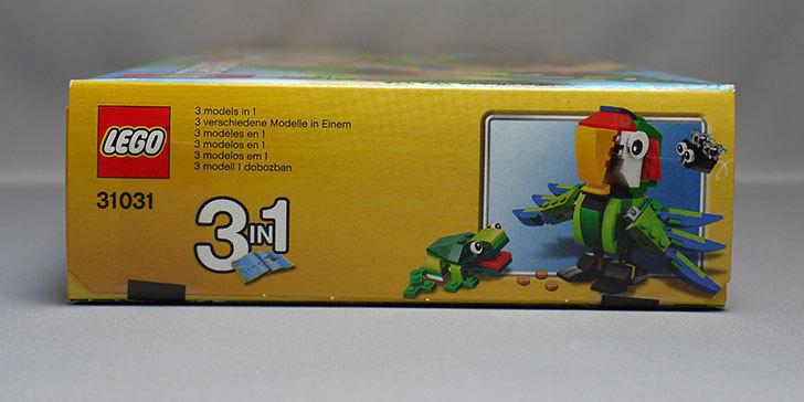 LEGO-31031-熱帯の動物たちが届いた5.jpg