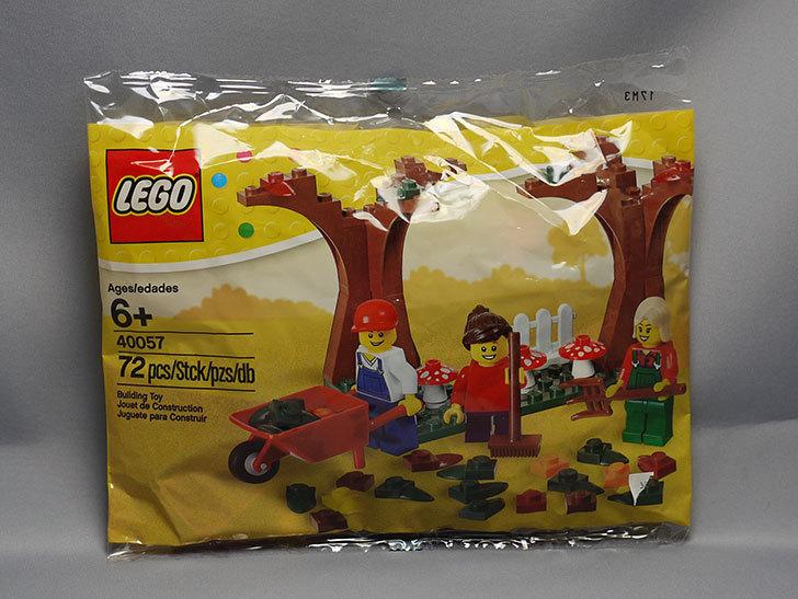 LEGO-40057-Fall-Sceneをクリブリで買って来た1.jpg