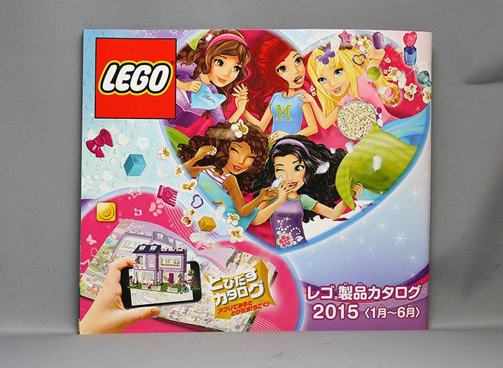LEGO-40091-Thanksgiving-Turkeyをクリブリで買って来た8.jpg
