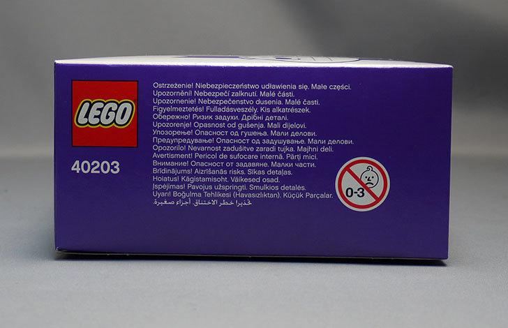 LEGO-40203-Vampire-and-Batをクリブリで買って来た5.jpg
