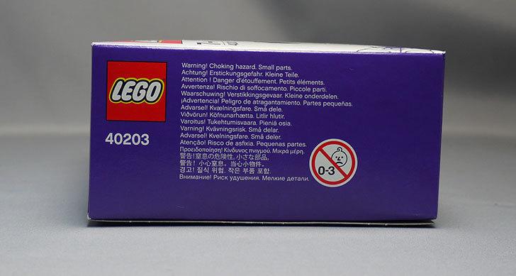 LEGO-40203-Vampire-and-Batをクリブリで買って来た6.jpg