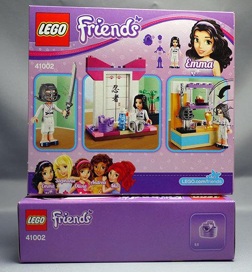 LEGO-41002-カラテレッスンが届いた。39%offで2個ポチったやつ2.jpg