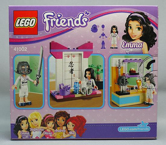 LEGO-41002-カラテレッスンが来た2.jpg