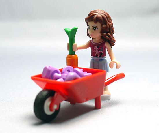 LEGO-41003-ウキウキファームを作った11.jpg