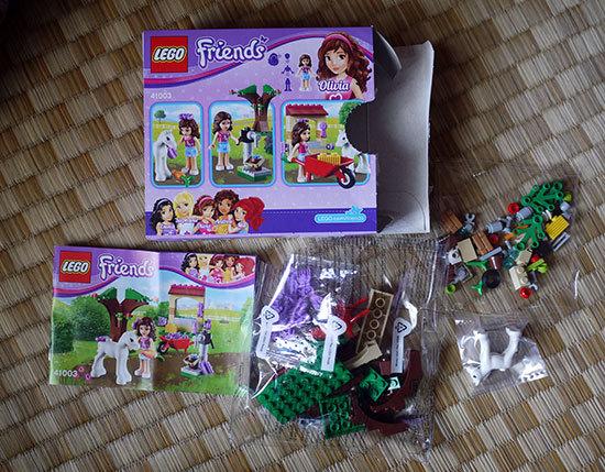 LEGO-41003-ウキウキファームを作った2.jpg