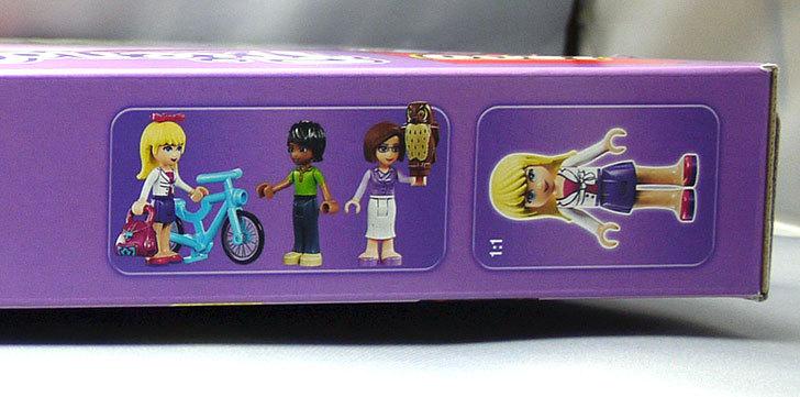 LEGO-41005-ハートレイクスクールが来た3.jpg