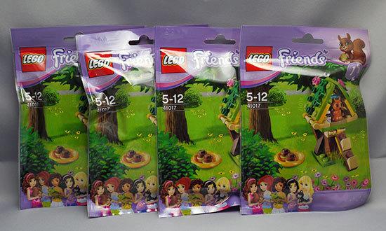 LEGO-41017-リスとツリーハウスが届いた1.jpg