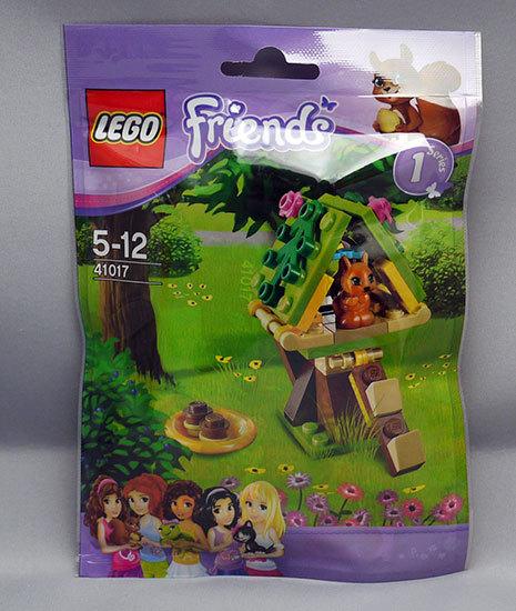 LEGO-41017-リスとツリーハウスが届いた2.jpg