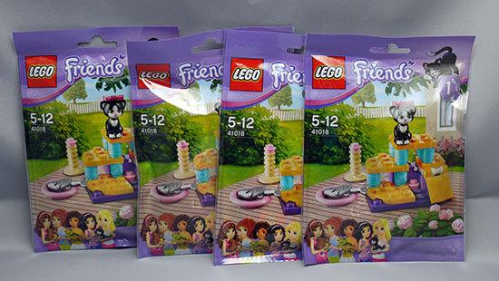 LEGO-41018-ネコとジャングルジムが届いた1.jpg