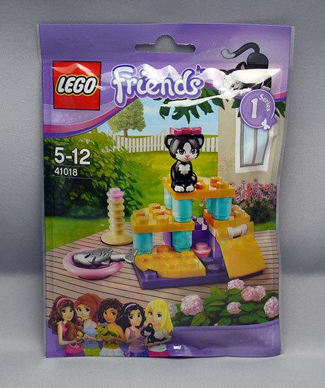 LEGO-41018-ネコとジャングルジムが届いた2.jpg