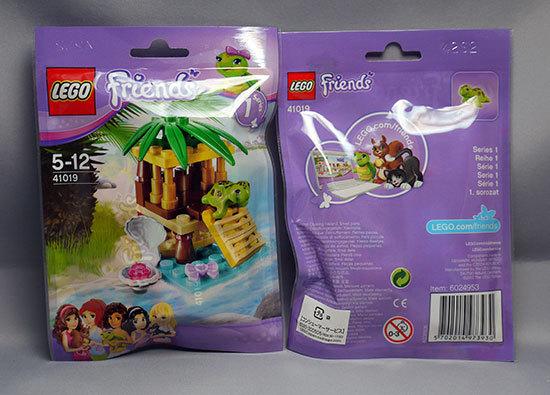 LEGO-41019-カメとプチオアシスを2個買った2-1.jpg