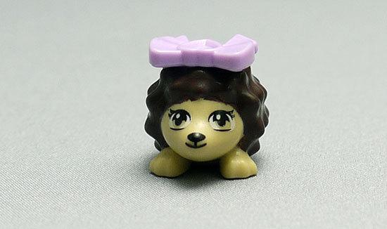 LEGO-41020-ハリネズミとシークレットガーデンを作った11.jpg