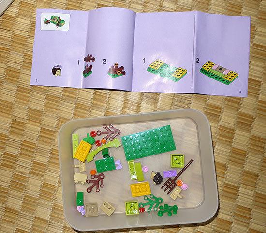LEGO-41020-ハリネズミとシークレットガーデンを作った3.jpg