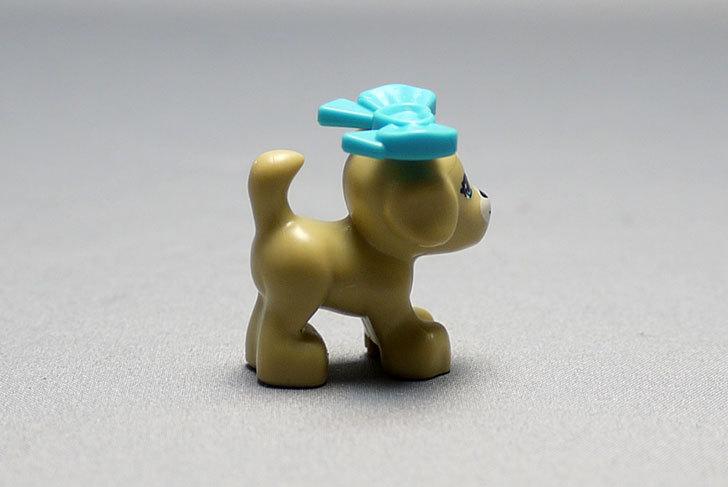 LEGO-41025-パピーとプレイハウスを作った27.jpg