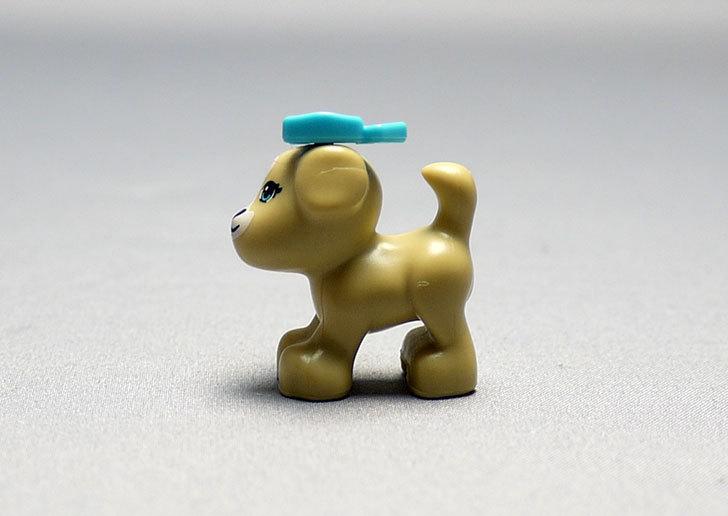 LEGO-41025-パピーとプレイハウスを作った31.jpg