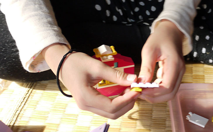 LEGO-41029-プチハウスを作った7.jpg