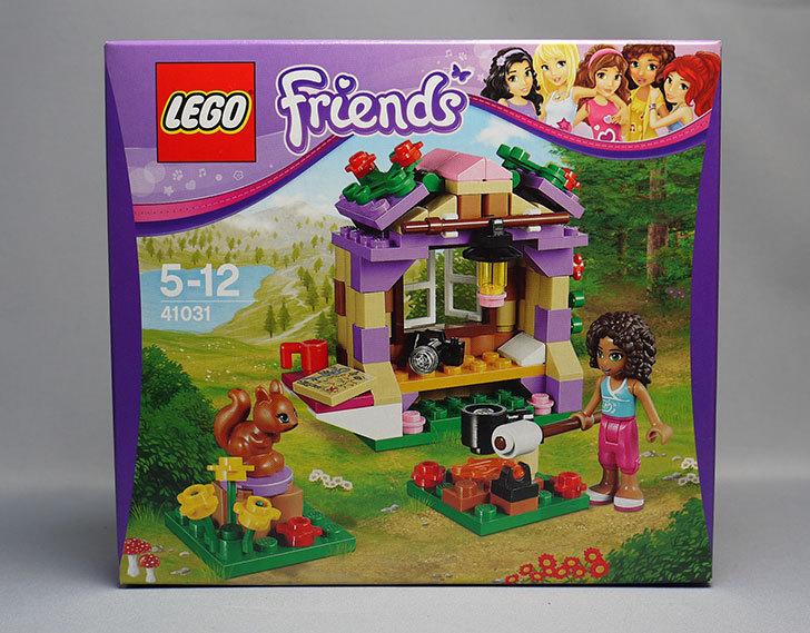 LEGO-41031-マウンテンコテージが来た1.jpg