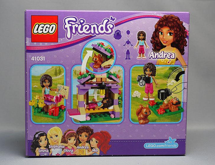 LEGO-41031-マウンテンコテージが来た2.jpg