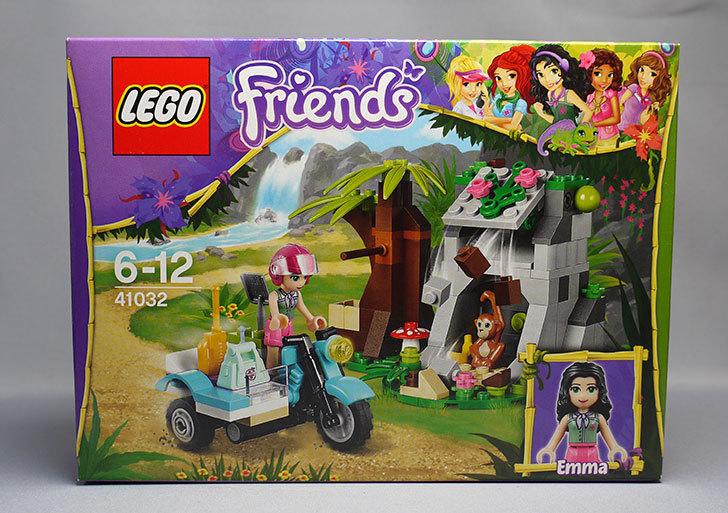 LEGO-41032-エキゾチックジャングルマウンテンが来た1.jpg