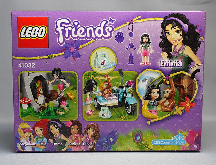LEGO-41032-エキゾチックジャングルマウンテンが来た2.jpg