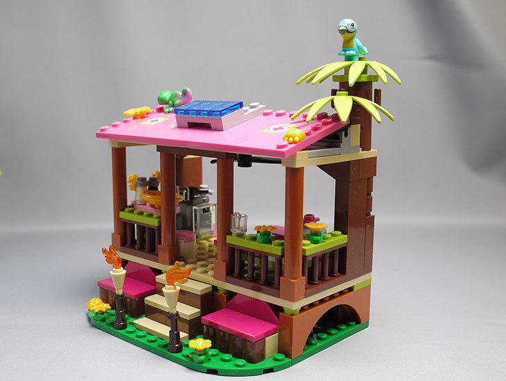 LEGO-41038-ミステリージャングルパラダイスを作った27.jpg