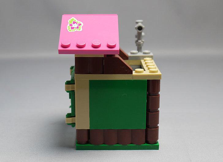 LEGO-41038-ミステリージャングルパラダイスを作った51.jpg