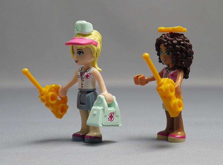 LEGO-41038-ミステリージャングルパラダイスを作った74.jpg