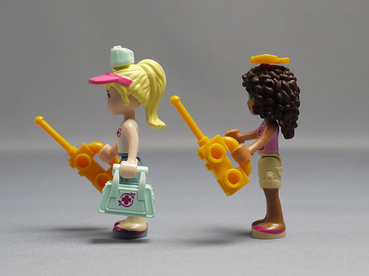 LEGO-41038-ミステリージャングルパラダイスを作った75.jpg