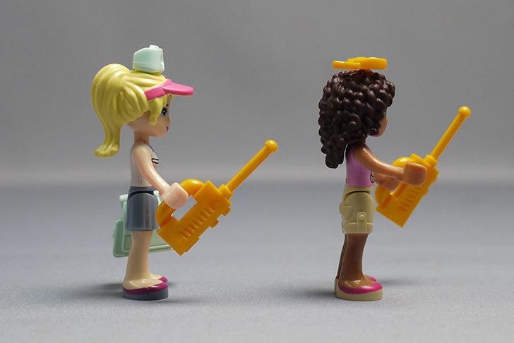 LEGO-41038-ミステリージャングルパラダイスを作った79.jpg