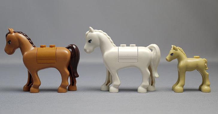 LEGO-41039-ラブリーサンシャインハウスを作った82.jpg