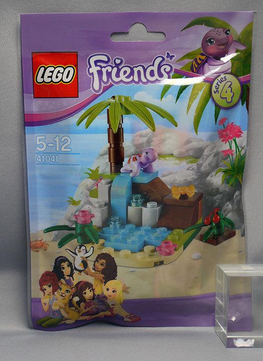 LEGO-41041-カメトプチパラダイスを買った1.jpg