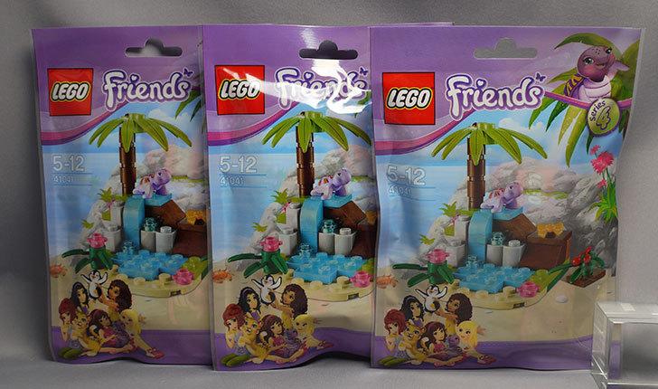 LEGO-41041-カメトプチパラダイス買った2-2.jpg