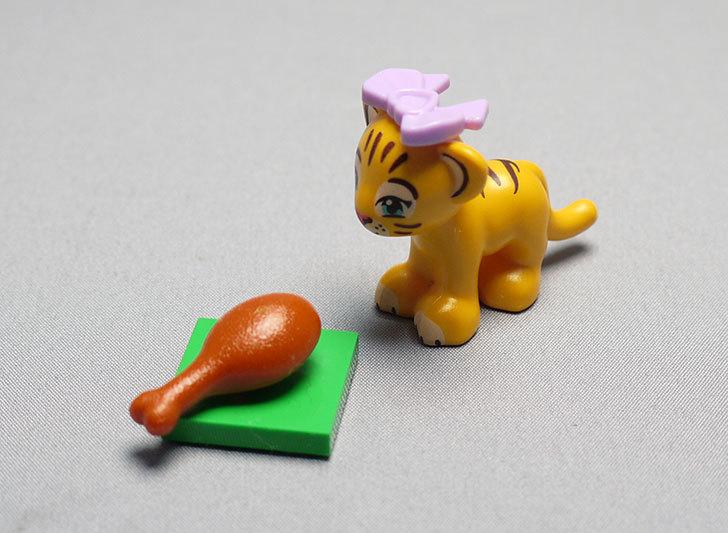 LEGO-41042-トラとビューティーテンプルを作った16.jpg